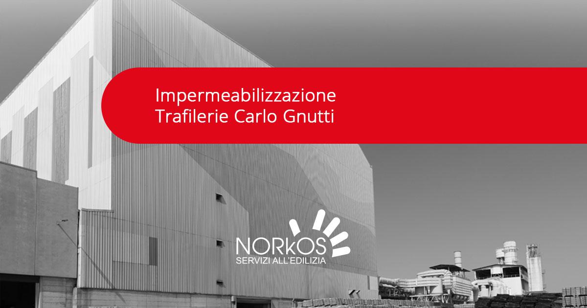 Norkos Impermeabilizzazione Trafilerie Carlo Gnutti